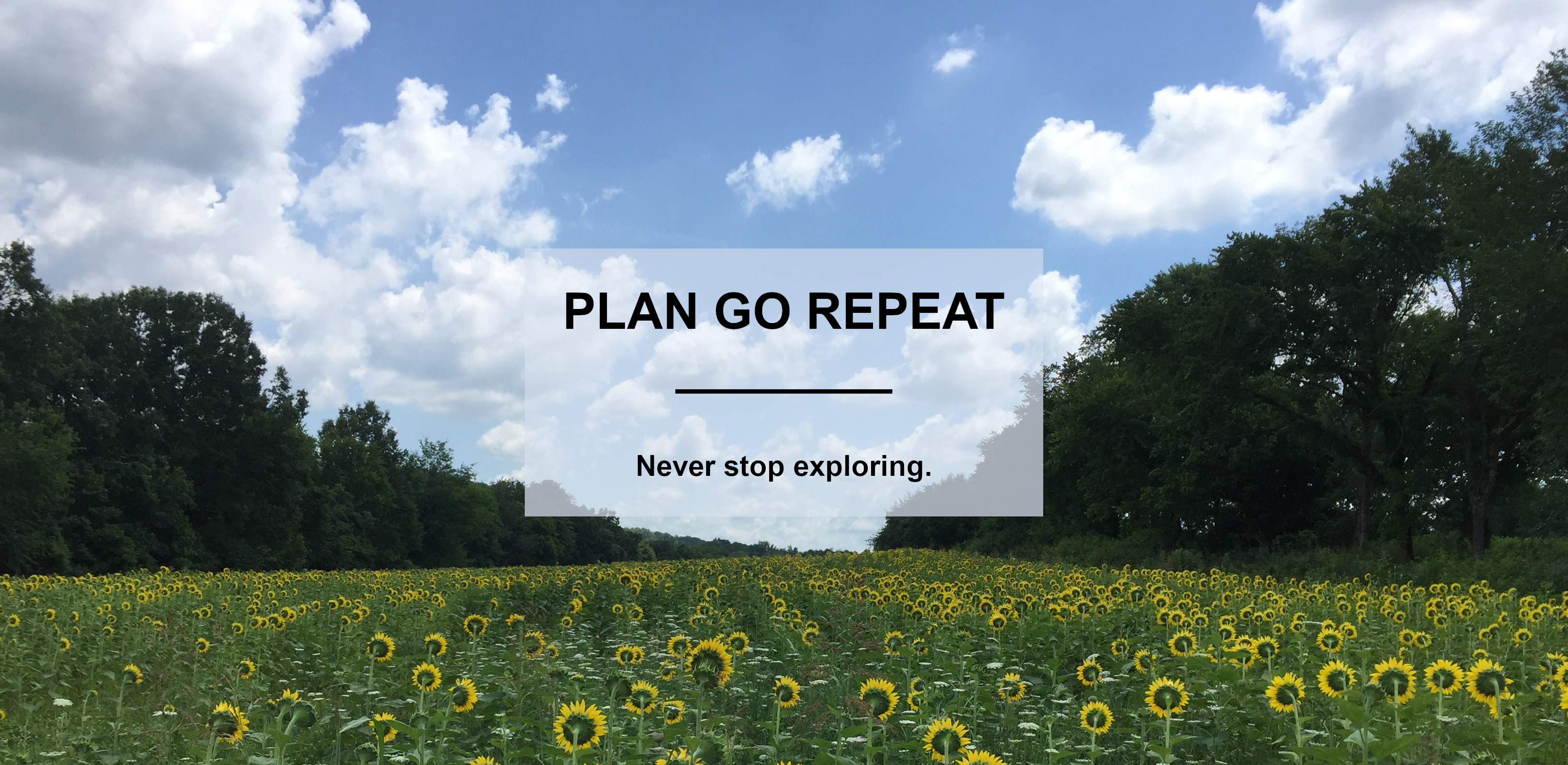 Plan Go Repeat